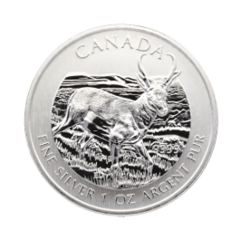 Canadian Wildlife Series - Antilope 1 oz